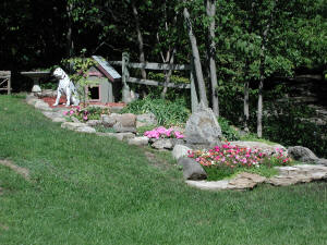 CliffSide Rock Garden